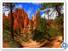 Lower Bryce Canyon Wash