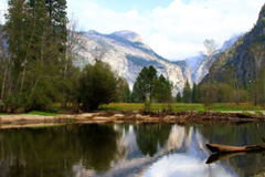 Yosemite National Park, reflections in the Mercid River